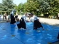 Forum des associations Cognin Aikido 2016 (15)