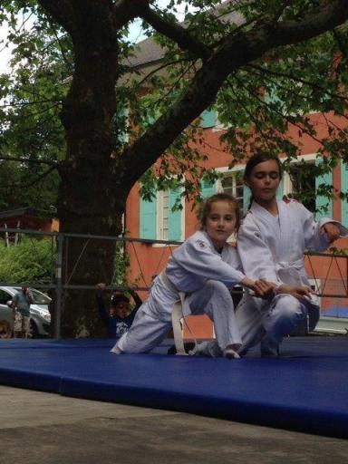 Aikido savoie  fetes de l'enfance (6)