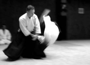 Luc Mathevet Aikido