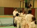 Aikido Cognin Savoie Janvier 2015 (1)