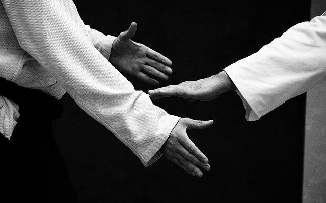 aikido-cognin